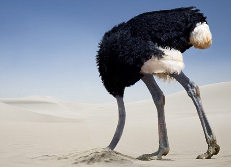 You are the Ostrich with your head in the sand